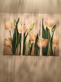 Tulips Canvas