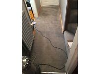 Silver carpet ( hall , stairs & landing