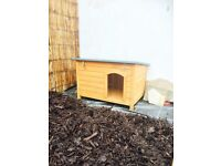 Large cat kennel/small dog kennel