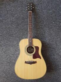 Acoustic Guitar - Tanglewood Premier TW115-ST ( +case/strap/picks)