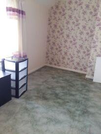 Nice single room for rent near deganham heath way station.