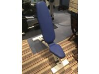 Blue Adjustable Weights Bench