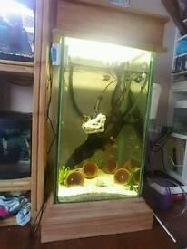 200l custom made fish tank