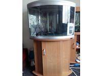 Aqua one ufo 550 corner fish tank