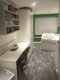 Luxury accommodation in Greenwich.Stylish studio measuring 15-16m²