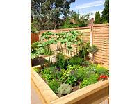 Sean Lindholm, Gardener Excelsus