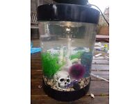 Large Biube tropical fish tank - Good condition - Lots of accessories