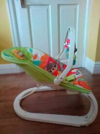 Fisher Price Vibrating Bouncer (Brought for £89.99)