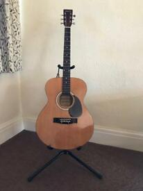 Elevation Acoustic Guitar