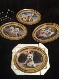 4 WEST HIGHLAND TERRIER wall hanging plates