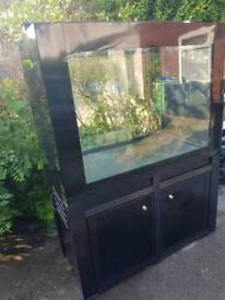 Fish tank Aquarium 4foot in mint condition