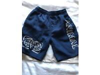 Boys Animal swim shorts age 2