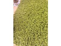 Brand new Fluffy green rug carpet