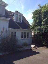 One bedroom semi detached house to rent, Goodrington.
