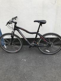 Raleigh Diamondback Bike