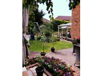 Loving Leaf Garden Services - friendly & professional, over ten years' experience