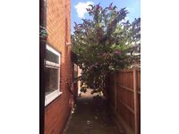 **LET BY** 3 BEDROOM MID-TERRACE PROPERTY-COBRIDGE-LOW RENT-DSS ACCEPTED-NO DEPOSIT-PETS WELCOME^