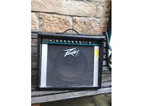 Peavey Backstage 110 65 watt amplifier