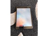 iPad mini 16gb wifi