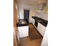 Low Fell,Gateshead. 1.5 Bed immaculate and modern lower Flat. No Bond! Dss welcome!