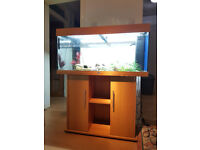 JUWEL RIO 180 LITER FISH TANK AND STAND FOR SALE,