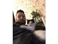NOW FOUND!!!!! Missing Cat, my best pals been missing since Tuesday.
