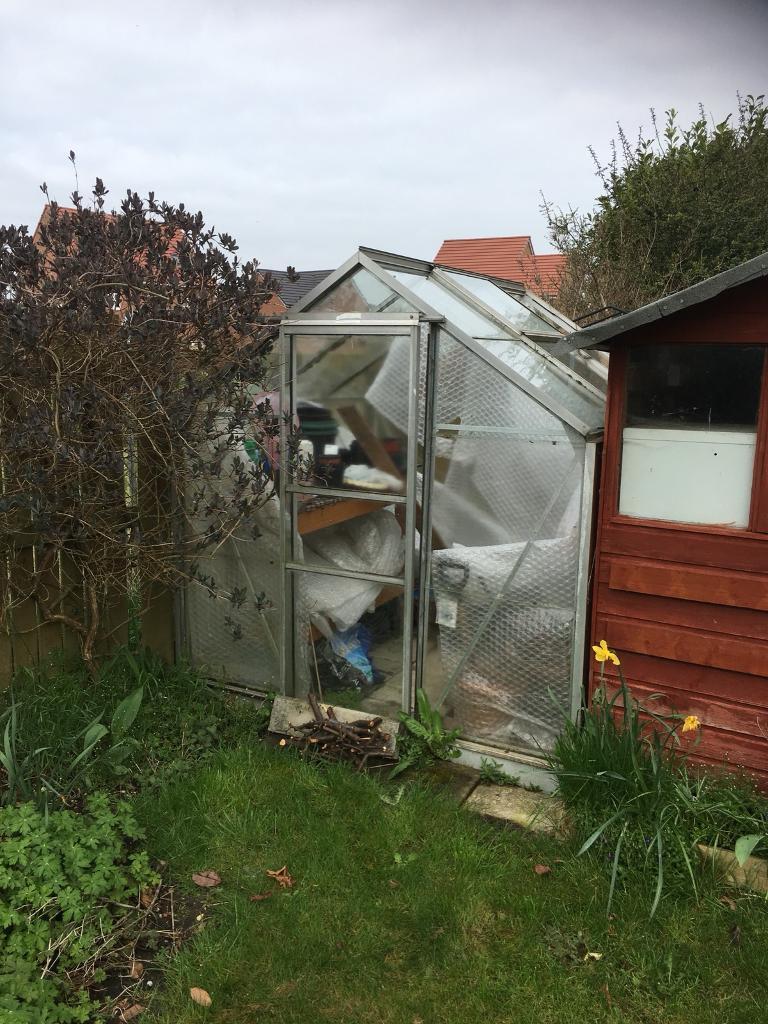 Greenhouse | in Pocklington, North Yorkshire | Gumtree