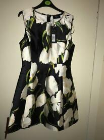 Brand New AX Paris Dress with Tags