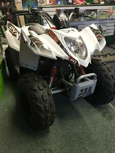 2016 Arctic Cat DVX 90 2x4