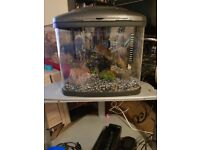 terrapin tank fish tank full set up