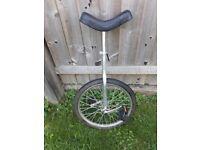 Adult Unicycle