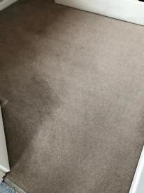 Cream flecked carpet large size 11ft 5 x 9ft square excellent condition