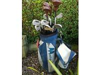 Pinseeker golf clubs