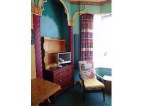 Large single room in sunny Greenbank