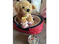 Build a Bear Dog Teddy & Accessories