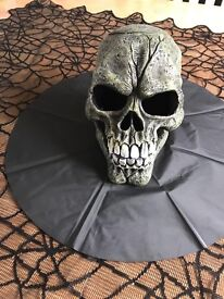 Halloween Color Changing Light Effect Skull Fogger Prop