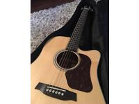 Walden Electric Acoustic D550CE