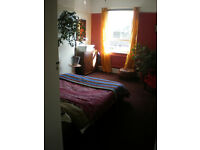 Beautiful double room for rent to gay guy in flat share