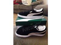Brand new mens puma suedes size 7