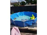 12ft pool with pump