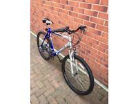 "PROFESSIONAL ADULTS mountain bike 26"" wheels size Bargain!"