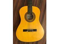Herald Guitar- model HL34