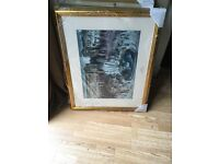 Picture frames quality brand new with high quality mounts
