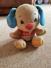 Fisherprice learning singing puppy.