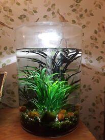 BiUbe aquarium