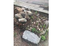 Rocks Rockery Stones Aberdeen. FOC collection only