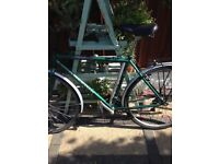 Raleigh bike cycling cycle