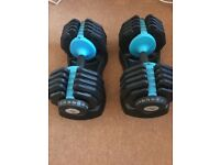 Men's health bench and X2 adjustable dumbells, great condition
