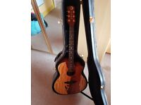 Luna Vista-Eagle Electro-Acoustic guitar