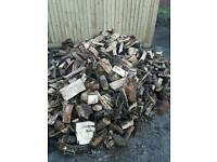 Sesson hard wood logs